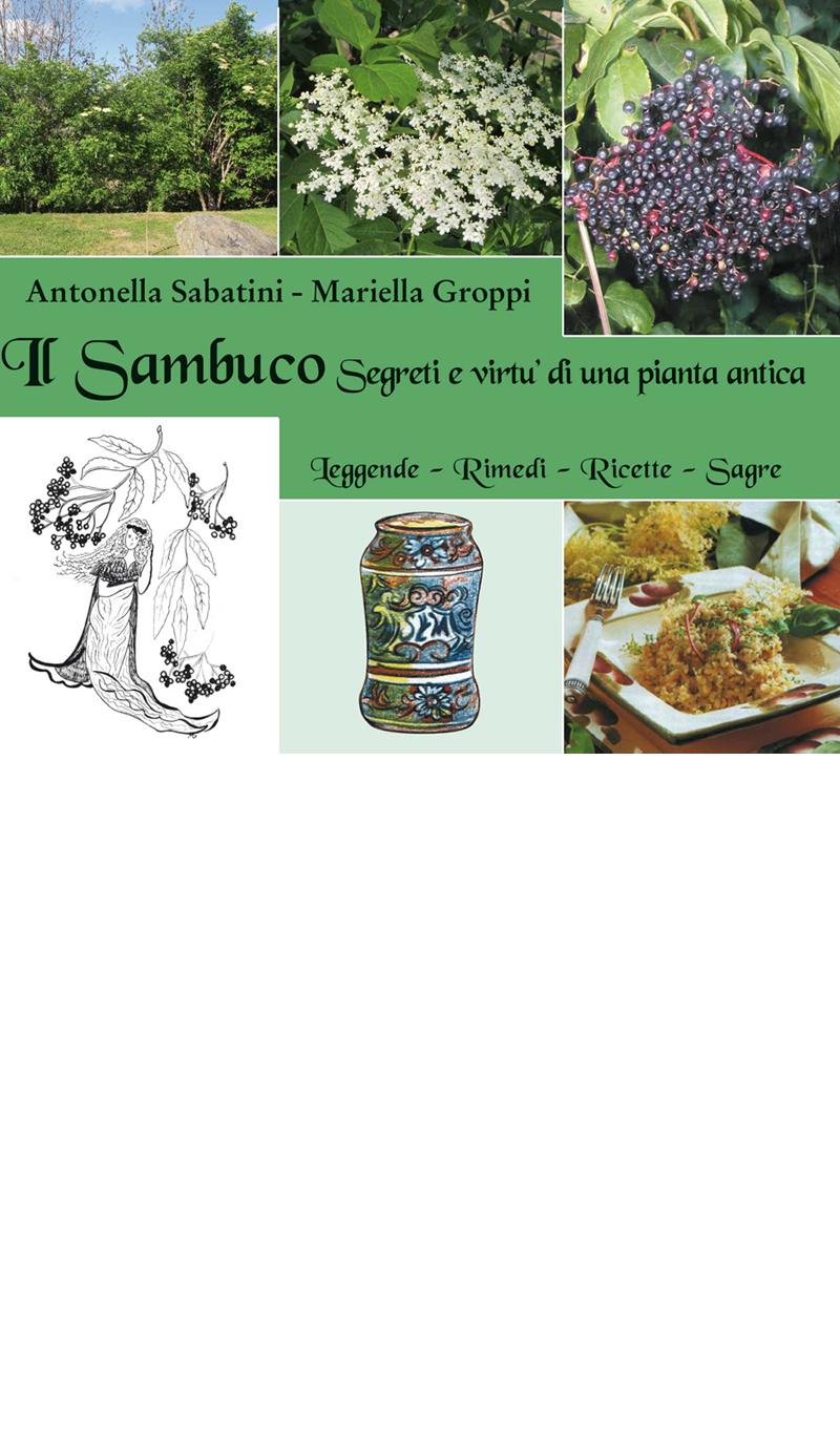 sambuco2017_sito_small