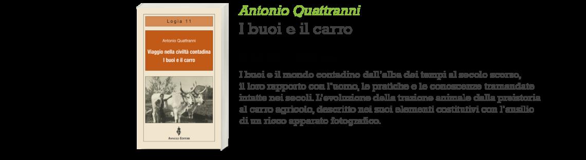 Antonio Quattranni_I buoi